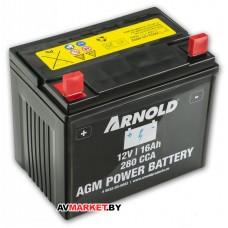 Аккумулятор Arnold AZ 100 для садового трактора MTD/Cub Cadet 5032-U3-0002 V1709 197*170-13 Германия