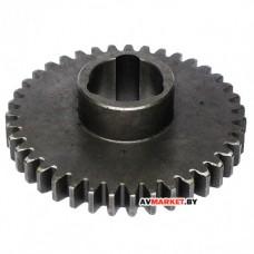 Шестерня (колесо зубчатое) 05-1701214 39 зуб. М3 Мблок МТЗ